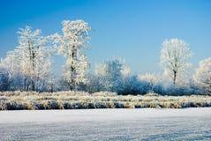 le pays des merveilles de l'hiver de la Hollande Photographie stock libre de droits