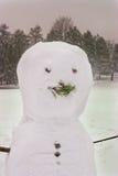 le pays des merveilles de l'hiver de scène Images stock