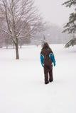 le pays des merveilles de l'hiver de scène Photos stock