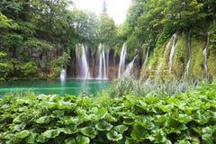 Le pays des merveilles de nature de lacs Plitvice Images libres de droits
