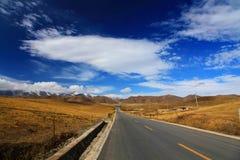 Le paysage automnal du plateau du Qinghai - du Thibet Photographie stock libre de droits