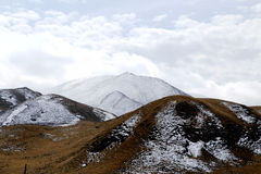 Le paysage automnal du plateau du Qinghai - du Thibet Image libre de droits