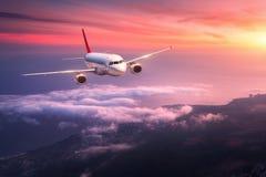 Le paysage avec le grand avion blanc vole dans le ciel rouge Images libres de droits