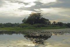 Le paysage biélorusse Polissya dans les rayons du soleil de soirée Image libre de droits