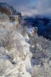 La neige a couvert le canyon grand Image stock