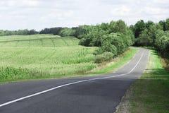 Paysage coloré avec le champ, la route et les buissons Photo libre de droits