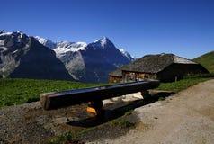 Le paysage d'alpes dans le secteur Jungfrau Images libres de droits