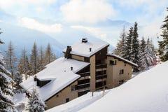 Le paysage d'hiver photos libres de droits