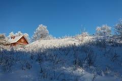 Le paysage d'hiver avec la neige photo libre de droits