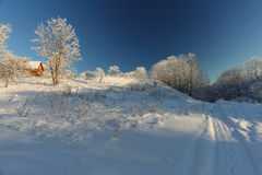 Le paysage d'hiver avec la neige image libre de droits