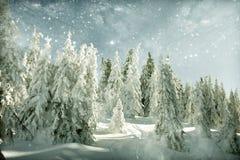 Le paysage d'hiver avec la neige a couvert la colline et le ciel bleu Photo stock