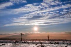 Le paysage d'hiver avec le soleil a gardé par deux petits arbres comme modèles sur une passerelle Image libre de droits