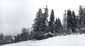 Le paysage d'hiver dans la forêt conifére a abandonné la vieille maison en bois, la hutte du ` s de forestier sur un pré neigeux  Photos libres de droits