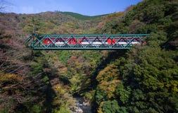 Le paysage d'Ountain avec le pont de chemin de fer et le train en automne assaisonnent à la ville de Hakone Image libre de droits