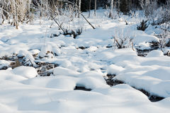 Le paysage de champ d'hiver avec les arbres givrés s'est allumé par la lumière molle de coucher du soleil - scène neigeuse de pay Photos libres de droits