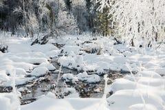 Le paysage de champ d'hiver avec les arbres givrés s'est allumé par la lumière molle de coucher du soleil - scène neigeuse de pay Photo stock