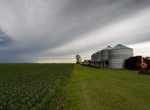 Le paysage de ferme de famille : Images libres de droits