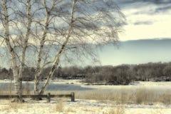 Le paysage de l'hiver Images libres de droits