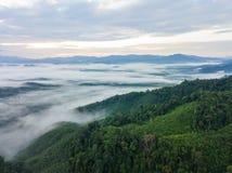 Le paysage de la forêt de montagne brumeuse a couvert des collines au khai NU de khao Photos stock