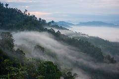 Le paysage de la forêt de montagne brumeuse a couvert des collines au khai NU de khao Images libres de droits
