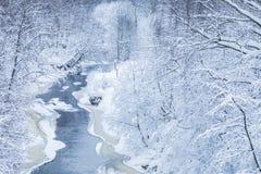 Le paysage de la petite rivière ou du ruisseau dans la belle forêt d'hiver ou en parc photos stock