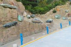 Le paysage de la route c?ti?re de Dalian dans la fin d'?t? images libres de droits