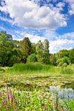 Le paysage de la verdure, d'un étang et des nuages dans un ciel bleu Photo libre de droits