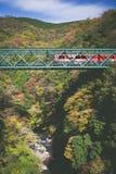 Le paysage de montagne avec le pont de chemin de fer et le train en automne assaisonnent Images stock