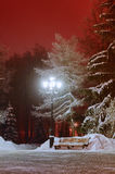 Le paysage de nuit d'hiver - parc neigeux avec le banc sous les arbres Photo libre de droits