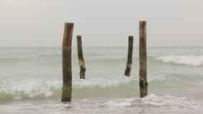 Le paysage de plage de mer clips vidéos