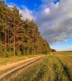 Le paysage de ressort, la route va entre la forêt et le champ Photo stock