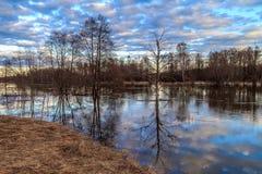 Le paysage de ressort, versent une inondation de rivière Photo stock