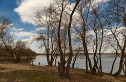 Le paysage de Volga par des arbres Photo stock