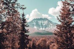 Le paysage des Monts Oural Les montagnes d'Ural Paysage de la Russie Photographie stock libre de droits