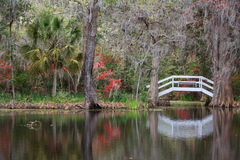 Jardin et étang du sud de paysage photo stock