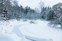 Le paysage du ruisseau dans la belle forêt d'hiver ou en parc parmi les arbres sous la neige, glace images libres de droits