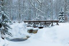 Le paysage du ruisseau et de la passerelle dans la belle forêt d'hiver ou en parc parmi les arbres sous la neige, glace photo libre de droits