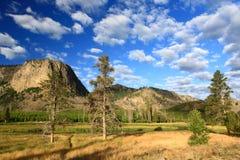 Le paysage du stationnement national de Yellowstone Images libres de droits