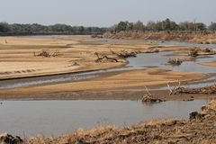 Le paysage du sud de rivière de Luanga en Zambie photographie stock libre de droits