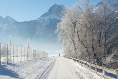 Le paysage fin de montagnes d'hiver Jour ensoleillé Baisse d'hiver Les couleurs lumineuses Rivière de forêt de forêt d'hiver Bran Image libre de droits
