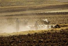 Le paysage, la poussière, a conduit, vallée sacrée, Pérou rural Images libres de droits