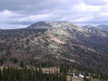 Le paysage magnifique des montagnes d'Altai les montagnes couronnées de neige, forêt épaisse photos stock