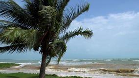 Le paysage marin tropical avec la haute ondule en Windy Weather banque de vidéos