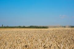 Le paysage a moissonné le jour Images stock