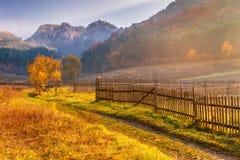 Le paysage montagneux dans des couleurs d'automne image libre de droits