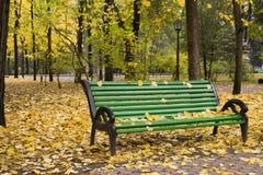 Le paysage naturel d'automne avec l'orange tombée part au sol Photos stock