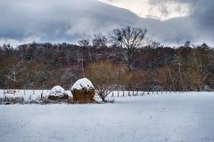 Le paysage roumain de campagne d'hiver avec la neige a couvert les arbres et la meule de foin photos libres de droits