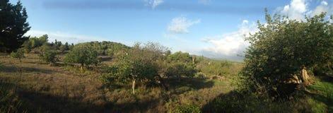 Le paysage rural d'un Ibiza Photo libre de droits