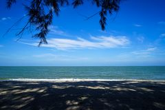 Le paysage scénique de la nuance abstraite molle d'arbre et le modèle d'ombre sur le sable échouent avec l'eau de mer, fond lumin Photo stock