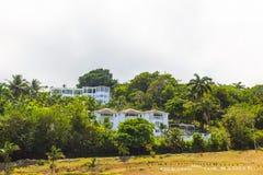 Le paysage vert de paysage de parc naturel à YS tombe, la Jamaïque photographie stock